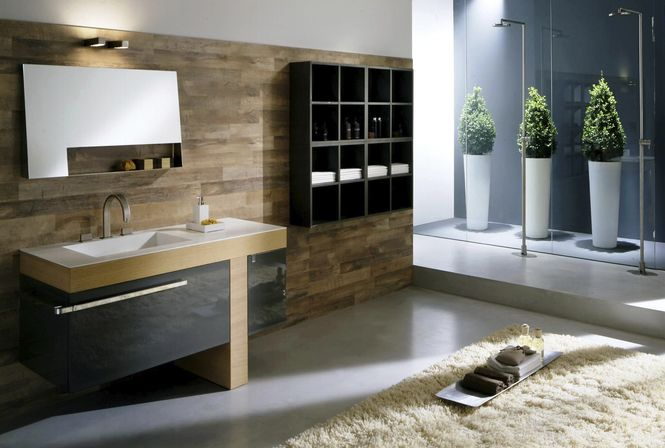 Pictures Of Modern Bathroom Designs : Modern bathroom d?cor and it s features